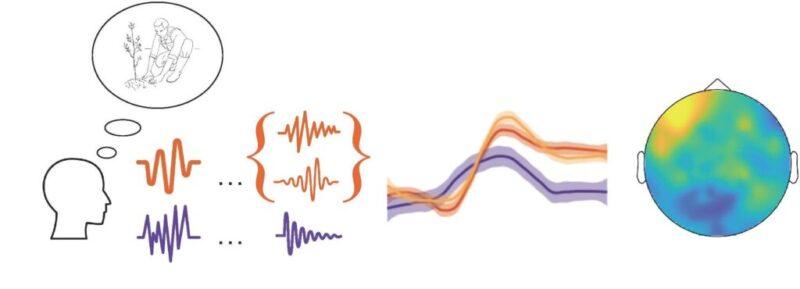 New EEG evidence on sentence production | NCCR Evolving ...