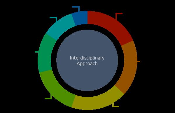 donut interdisciplinary approach